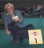 ... a dream came true! Second time at a world-dog-show Norbu became in Amsterdam 2002 - Best Male - and BOB Veteran!